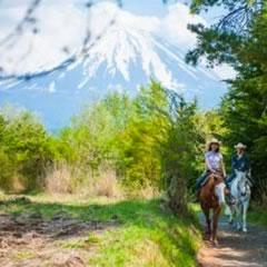富士山ろくの乗馬
